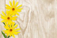 3 ярких желтых цветка на деревянной предпосылке Стоковое Изображение