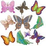 10 ярких пестрых бабочек Стоковые Изображения RF