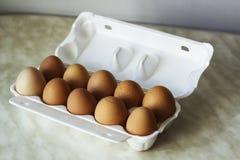 10 ярких яичек цыпленка коричневеют цвет в белой упаковке пены Стоковые Фотографии RF