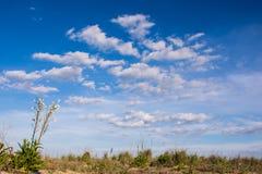 Яркое небо на пляже Rehoboth Стоковые Изображения