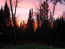 Яркое ночное небо стоковые фотографии rf