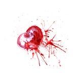 Яркое сердце акварели с штриховатостями краски Стоковое Изображение RF