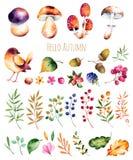 Яркое собрание с листьями осени, Иллюстрация вектора