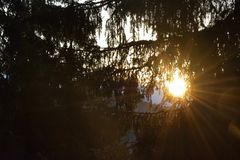 яркое солнце Стоковое фото RF
