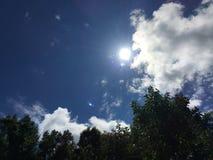 яркое солнце стоковая фотография