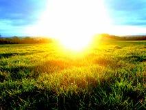 яркое солнце Стоковая Фотография RF