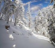 Яркое утро зимы в прикарпатских горах при покрытый снег Стоковые Фото