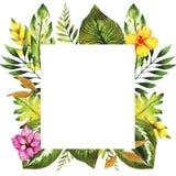 Яркой рамка нарисованная рукой с флористическими элементами Стоковое Изображение RF