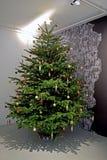 Ярк освещенная рождественская елка стоковые изображения rf