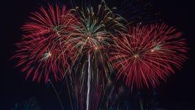 ярк цветастое ночное небо феиэрверков Celebrati Нового Года Стоковые Изображения