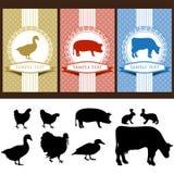 ярлыки еды иллюстрация вектора