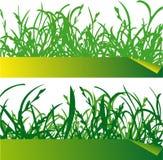 Ярлыки зеленой травы Иллюстрация вектора