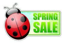 Ярлык зеленого цвета сбывания весны с ladybird иллюстрация вектора
