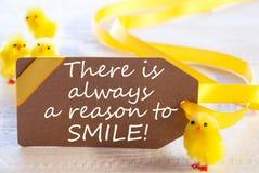 Ярлык пасхи, цыпленоки, закавычит всегда причину усмехнуться Стоковая Фотография