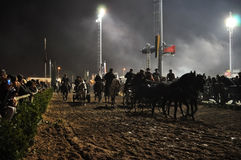 Ярмарка лошади Golega Стоковые Фото