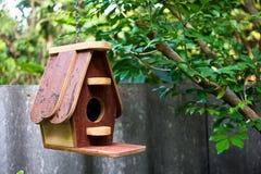 ярд белизны США дома заднего цвета птицы голубого вися красный Стоковое фото RF
