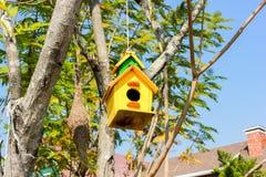 ярд белизны США дома заднего цвета птицы голубого вися красный Стоковые Изображения