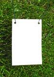 ясная белизна бумаги травы Стоковые Изображения