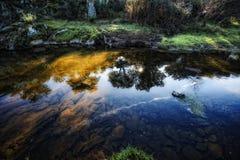 ясная вода Стоковая Фотография