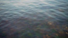 Ясная голубая волнистая вода на летний день Дно моря покрыто с пестрот акции видеоматериалы