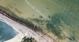 Ясная зеленая вода сверху сток-видео