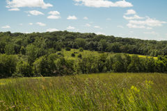 Ясная зона живой природы заводи - Jasper County, Айова Стоковые Изображения