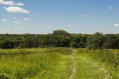 Ясная зона живой природы заводи - Jasper County, Айова Стоковые Изображения RF