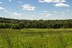 Ясная зона живой природы заводи - Jasper County, Айова Стоковые Фото