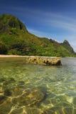 ясная кристаллическая вода Гавайских островов стоковое изображение rf