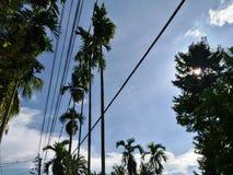 Ясное небо Стоковое Изображение