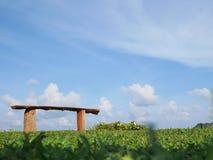 Ясное небо Стоковое Фото