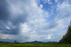 Ясность облака голубого неба сосны горы красивая стоковое изображение rf