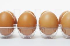 ясность eggs свежий пластичный поднос стоковое фото rf