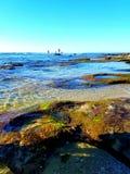 Ясные приливы Стоковые Фотографии RF