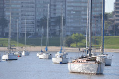 яхта залива Стоковые Фото