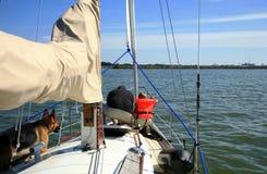 яхта лета человека собаки ребенка Стоковая Фотография RF