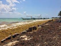 Яхта на береге Стоковые Изображения RF