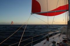 яхта spinnaker гонки Стоковые Фотографии RF