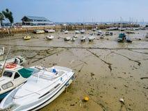 Яхты в гавани во время оттока Стоковая Фотография RF