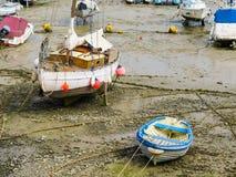 Яхты в гавани во время оттока Стоковые Изображения RF