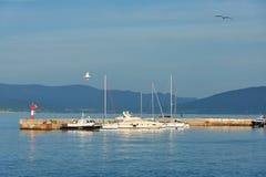 Яхты в гавани стоковые фотографии rf