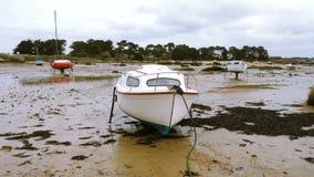Яхты и шлюпки во время малой воды видеоматериал