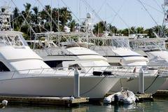 яхты припаркованные стыковкой Стоковое Изображение