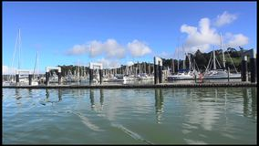 Яхты причаливая в заливе островов Новой Зеландии сток-видео