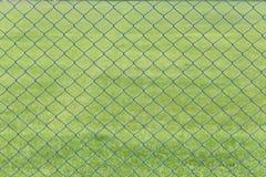 Ячеистая сеть или клетка стали зеленой лужайки в саде Стоковые Фото