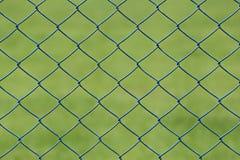 Ячеистая сеть или клетка стали зеленой лужайки в саде Стоковая Фотография RF
