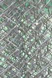 Ячеистая сеть Стоковые Фото