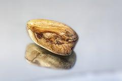 Яшм-камень ландшафта жизни Стоковое Фото
