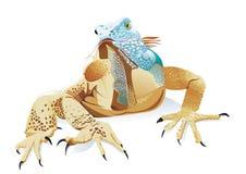 Ящерица в цвете Стоковое фото RF