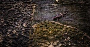 Ящерица на стене в tample Стоковое Изображение